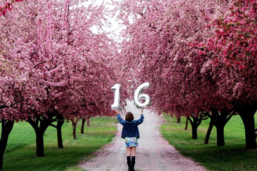 IMG_1668-1